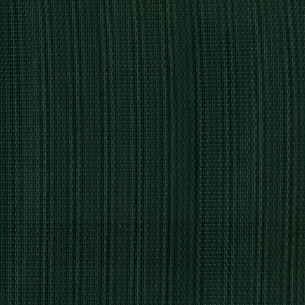 FS-251 Forest Green